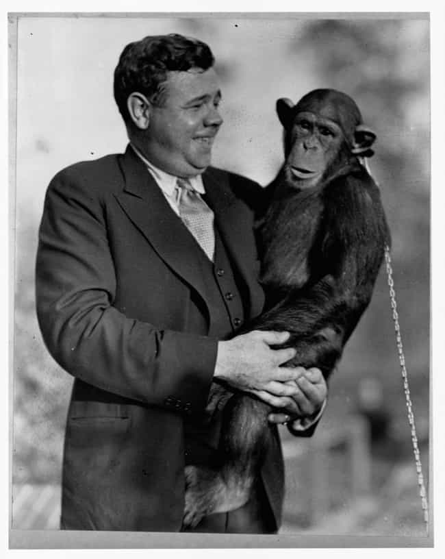 Monkey Business is listed (or ranked) 1 on the list Photos That Will Make You See Babe Ruth In A New Light