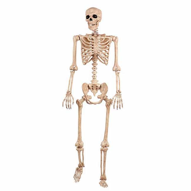 Crazy Bonez Pose-N-Stay ... is listed (or ranked) 2 on the list The Best Halloween Decorations For Adding Some Haunt To Your House