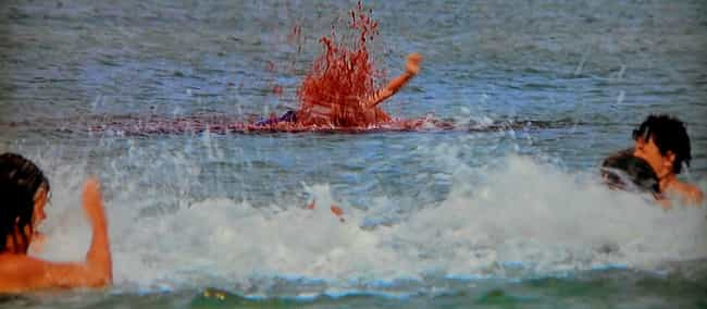 Alex Kintner, The Boy Who Shou... is listed (or ranked) 2 on the list Behind The Scenes Of Every Death In 'Jaws'