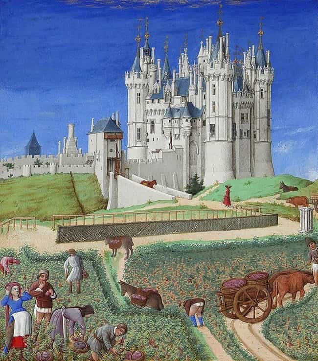 Serfs Were Required To P... is listed (or ranked) 3 on the list A Detailed Breakdown Of How Much It Sucked To Be A Medieval Serf