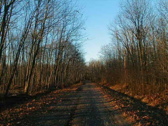 Boy Scout Lane - Stevens... is listed (or ranked) 1 on the list The Most Haunted Stretches Of Roads Across The United States