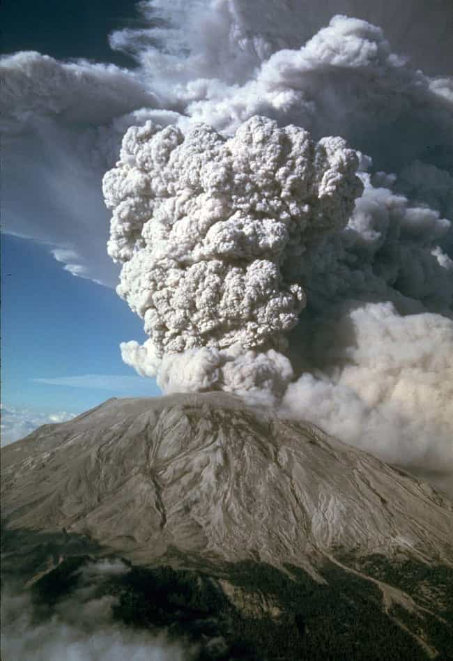 One Survivor Said The Eruption... is listed (or ranked) 1 on the list First-Hand Accounts From The 1980 Eruption Of Mount St. Helens