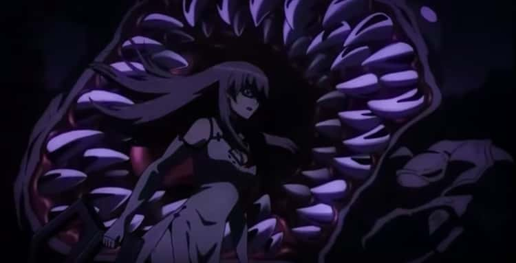 Sheele Is Eaten While Saving Mine's Life In 'Akame ga Kill'