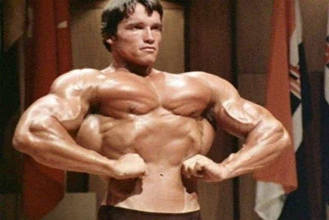 Guinness World Records Dubbed... is listed (or ranked) 8 on the list Unbelievably Macho Tales About Arnold Schwarzenegger's Very Manly Life