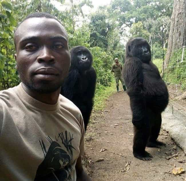This Selfie Of Anti-Poachers G... is listed (or ranked) 4 on the list 20 Interesting Pictures That Will Make You Say 'Huh'