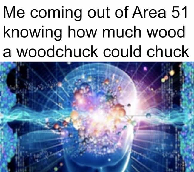 How Much Wood Could A Woodchuc... is listed (or ranked) 4 on the list It's Here: 17 More Area 51 Memes, Because They're Storming It Today
