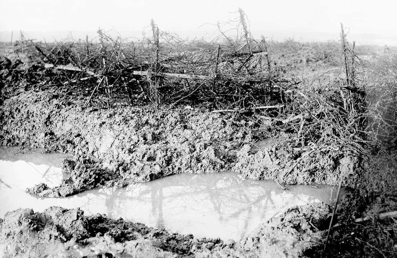 'It Was Like Pie Meat For The  is listed (or ranked) 3 on the list WWI Soldiers Describe What It Was Like To Go 'Over The Top' In Trench Warfare