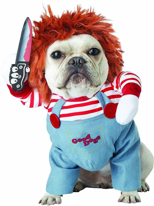 Chucky is listed (or ranked) 2 on the list Spooky Halloween Costumes For Your Little Hell Hounds