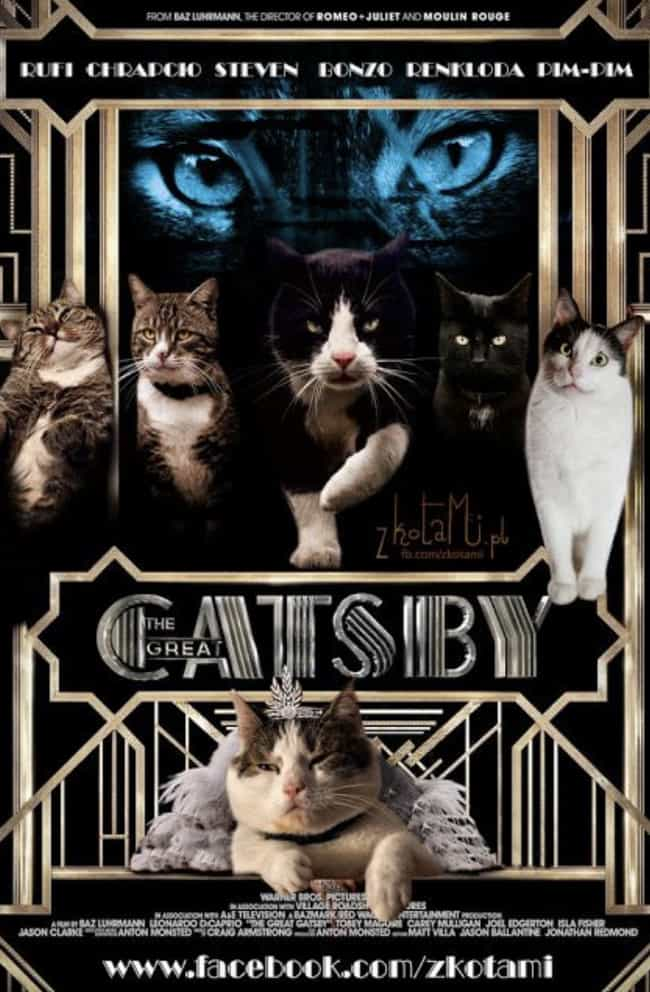 The Great Catsby is listed (or ranked) 2 on the list 19 Cat Movie Posters For Films That Actually Seem Like They'd Be Pretty Good