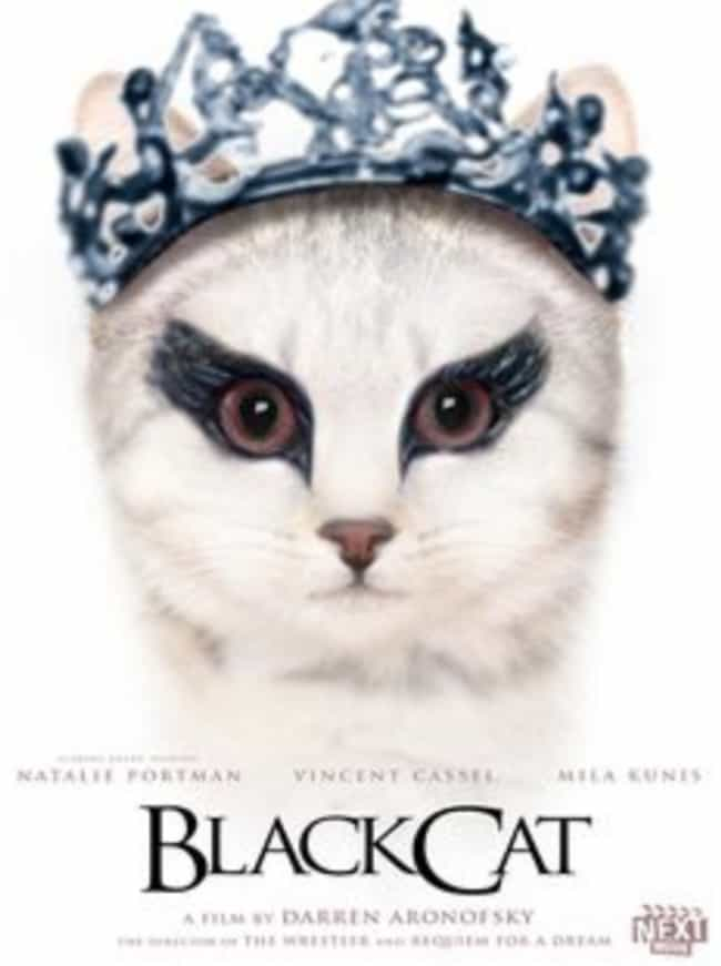 Black Cat is listed (or ranked) 1 on the list 19 Cat Movie Posters For Films That Actually Seem Like They'd Be Pretty Good