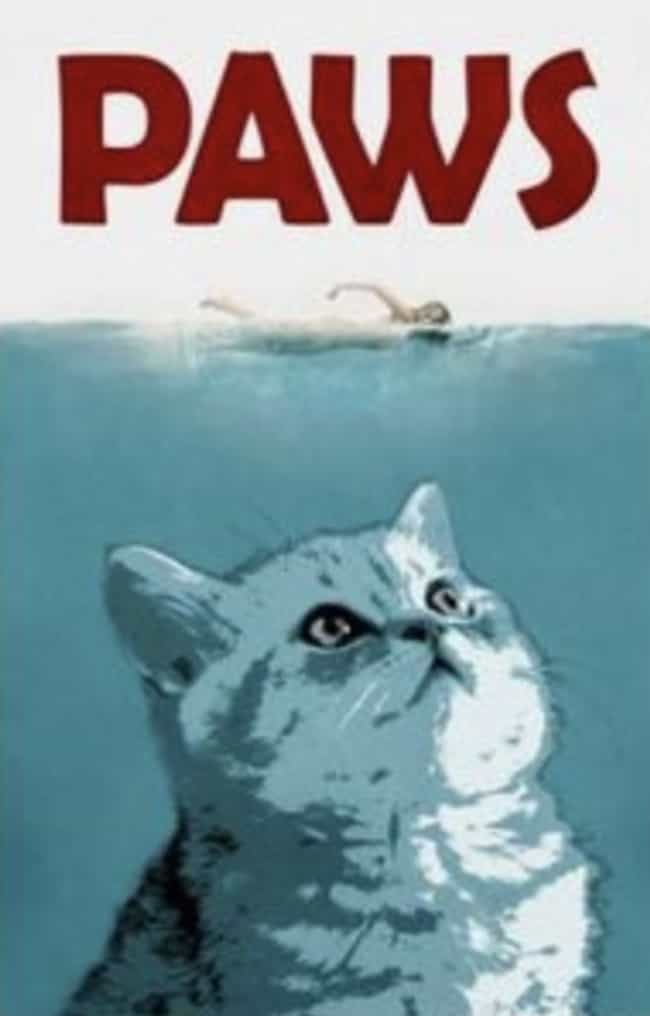 Paws is listed (or ranked) 4 on the list 19 Cat Movie Posters For Films That Actually Seem Like They'd Be Pretty Good