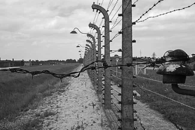 Paragraph 175 Sent Men To Conc... is listed (or ranked) 2 on the list A Third Reich Law That Sent Thousands To Camps Stayed On The Books Into The 1990s