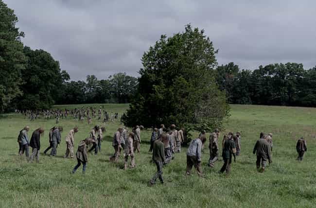Beta Gathers Walkers is listed (or ranked) 4 on the list Everything That Happened In 'The Walking Dead' Season 10, Episode 2: 'We Are The End Of The World'