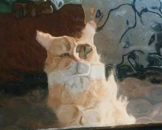Kill Me is listed (or ranked) 1 on the list 21 Times Cats Stood Behind Pixelated Windows And Got Even Cuter