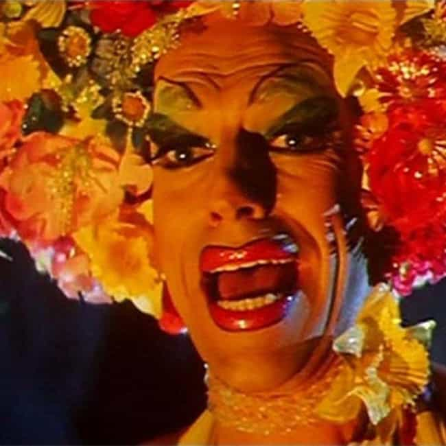 Slapped Your MOther is listed (or ranked) 4 on the list The Best Quotes From 'The Adventures of Priscilla, Queen of the Desert'