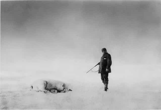 Balloonist S.A. Andrée With A ... is listed (or ranked) 3 on the list Haunting Photos Discovered In The Arctic Ice 33 Years After A Doomed Expedition Set Out