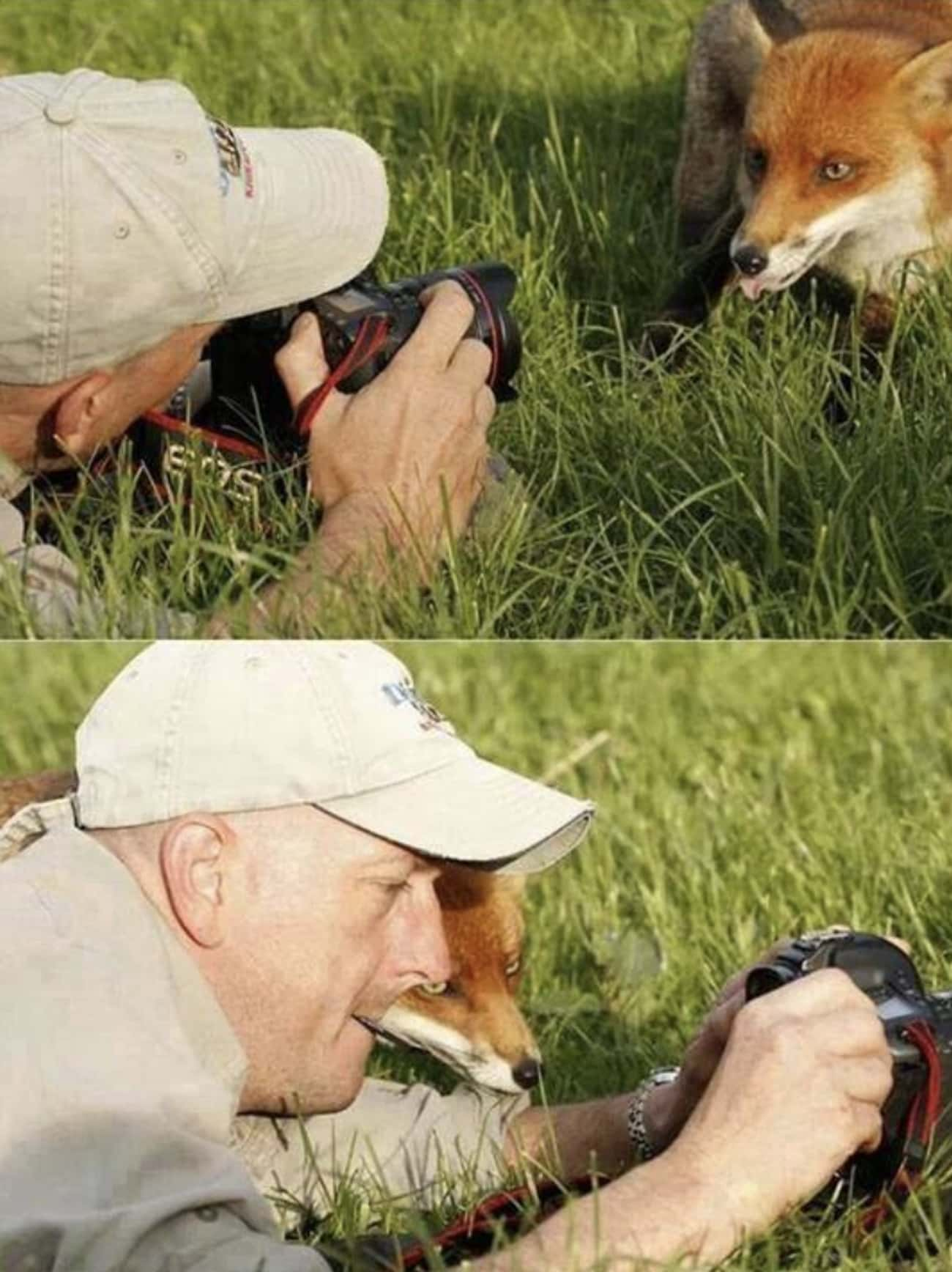 Checking The Photo Quality is listed (or ranked) 1 on the list 25 Blessed Images That Will Warm Your Heart and Soul