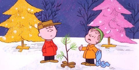 Random Best Quotes From 'A Charlie Brown Christmas'