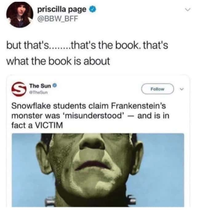 Snowflake Frankenstein is listed (or ranked) 8 on the list 27 People Who Didn't Think Things Through