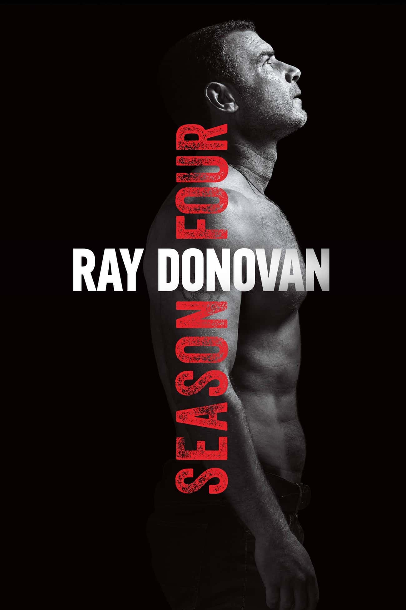 Ray Donovan - Season 4 is listed (or ranked) 4 on the list Ranking the Best Seasons of 'Ray Donovan'