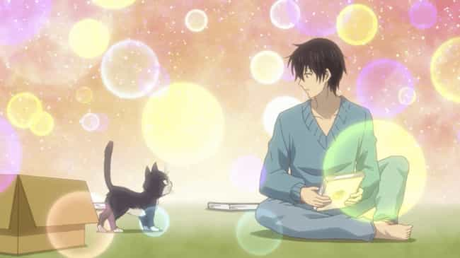 My Roommate is a Cat is listed (or ranked) 3 on the list The 15 Best Anime With Animal Protagonists, Ranked