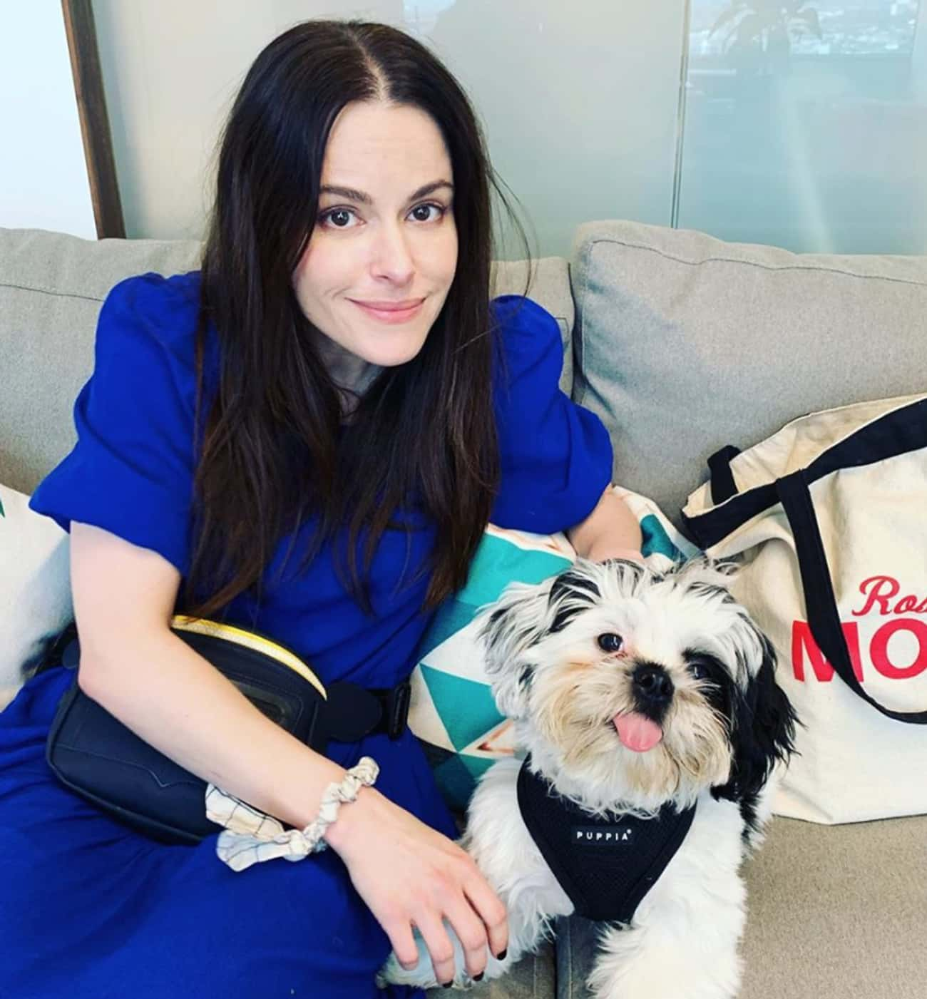 Read More About Emily Hampshir is listed (or ranked) 3 on the list Every Celebrity Emily Hampshire Has Dated