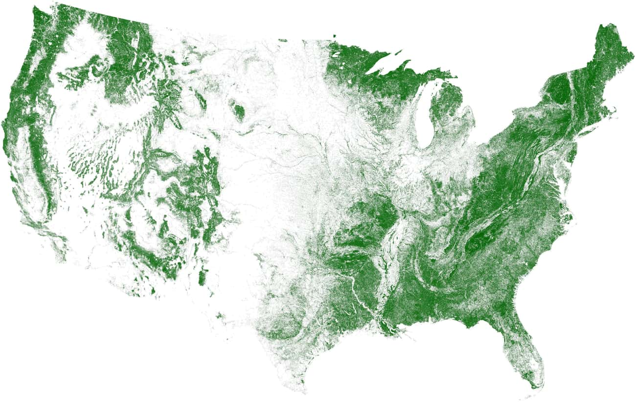 Tree Cover, Visualized