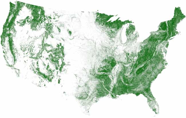 Tree Cover, Visualized ... is listed (or ranked) 4 on the list 17 Maps Of The United States That Made Us Say