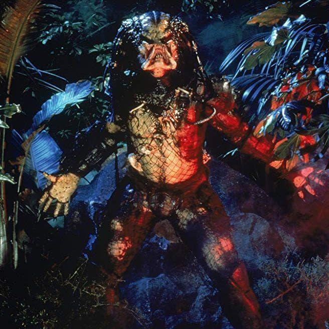 Random Best 'Predator' Quotes