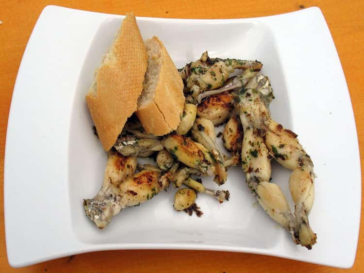 The Earliest Evidence Of Cooked Frog Legs Was Discovered In England