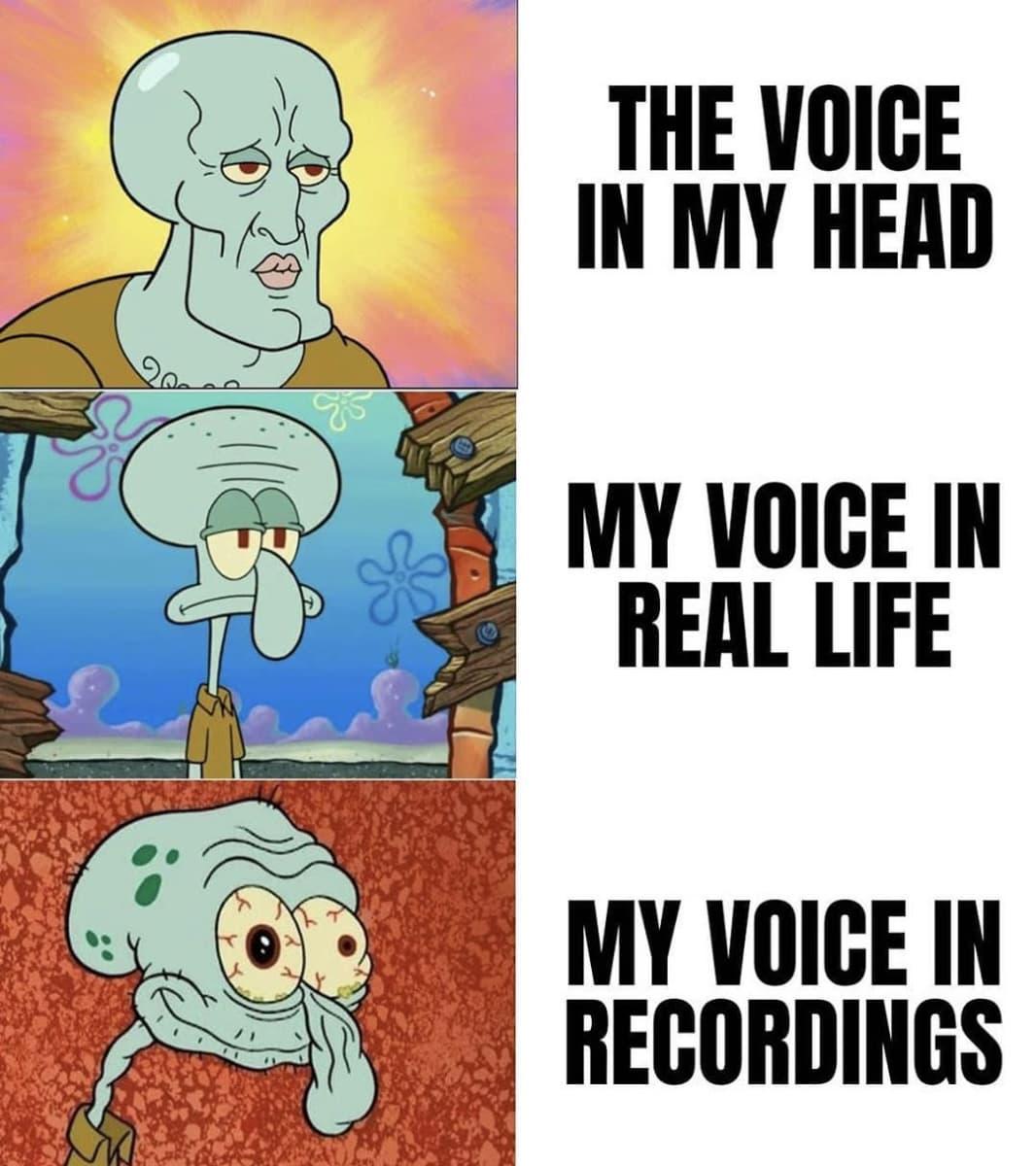 Random Spongebob Squarepants Memes That Take Memes To Next Level