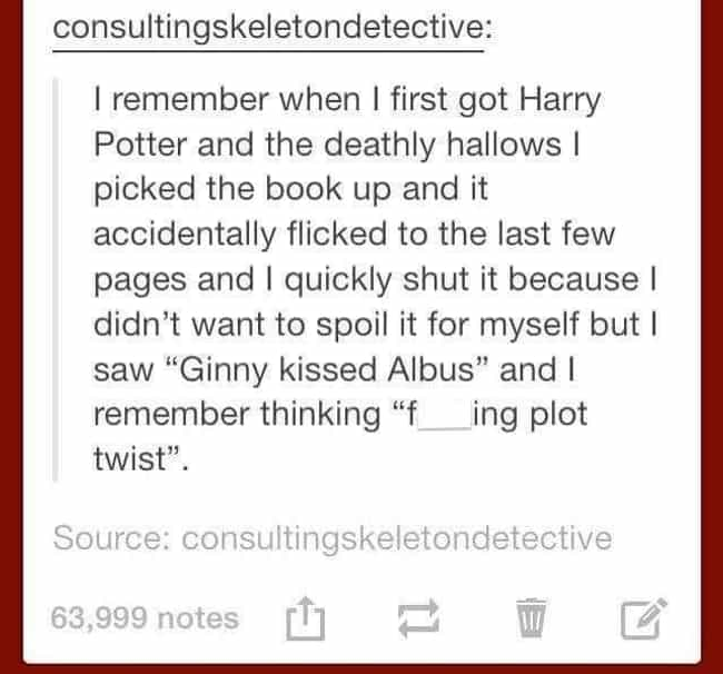 Plot Twist is listed (or ranked) 1 on the list 35 Harry Potter Tumblr Posts That Prove This Fandom Is Absolutely Hilarious