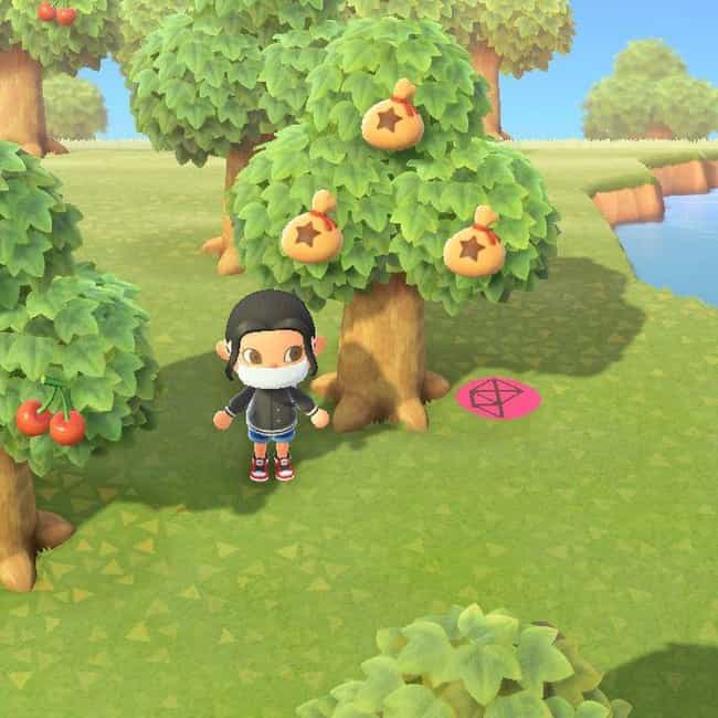 You Can Make Bank By Pla... is listed (or ranked) 2 on the list 16 Things You Probably Didn't Know You Could Do In 'Animal Crossing: New Horizons'