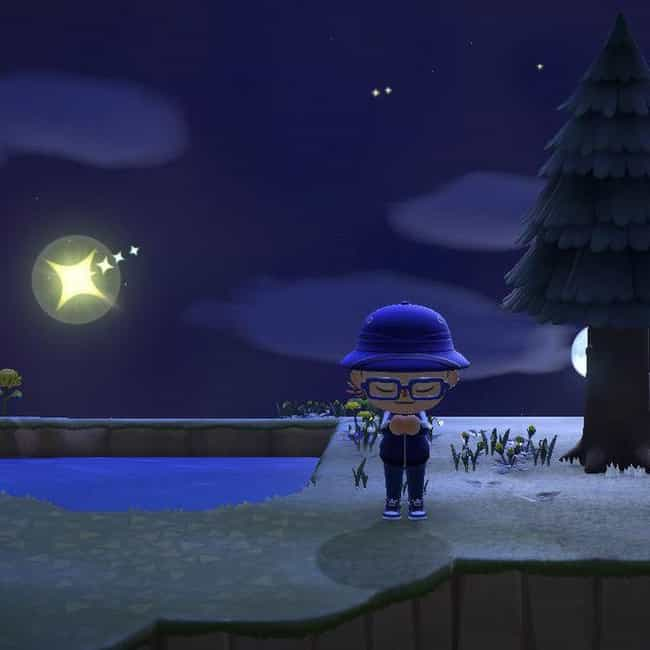 You Can Wish Upon A Shoo... is listed (or ranked) 3 on the list 16 Things You Probably Didn't Know You Could Do In 'Animal Crossing: New Horizons'
