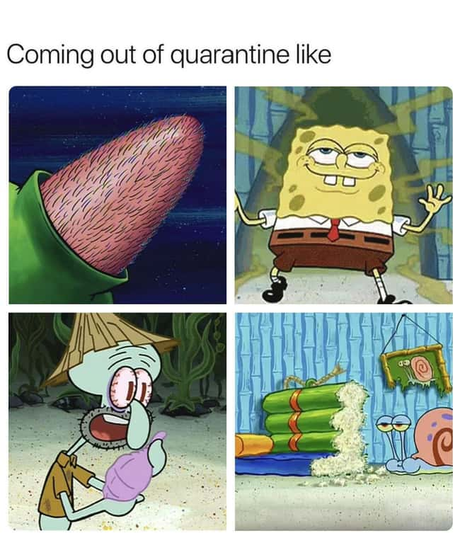 Same is listed (or ranked) 21 on the list 23 Random Coronavirus Memes That Almost Everyone Can Relate To Right Now