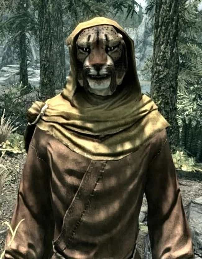 M'aiq The Liar Is A God ... is listed (or ranked) 4 on the list 'Skyrim' Fan Theories That Actually Make A Lot Of Sense