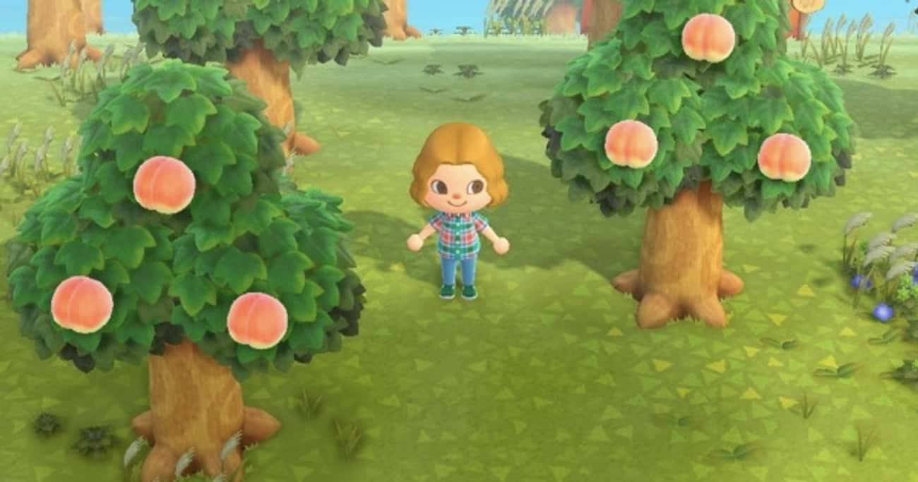 Peaches is listed (or ranked) 1 on the list Every Type Of Fruit In 'Animal Crossing: New Horizons', Ranked