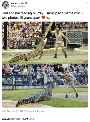 Same Animal, 15 Years Apart is listed (or ranked) 1 on the list 21 Photos Of Robert Irwin That Would Make His Father, Steven Irwin, Proud