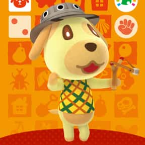 Goldie is listed (or ranked) 23 on the list All 'Animal Crossing: New Horizons' Villagers & Characters, Ranked