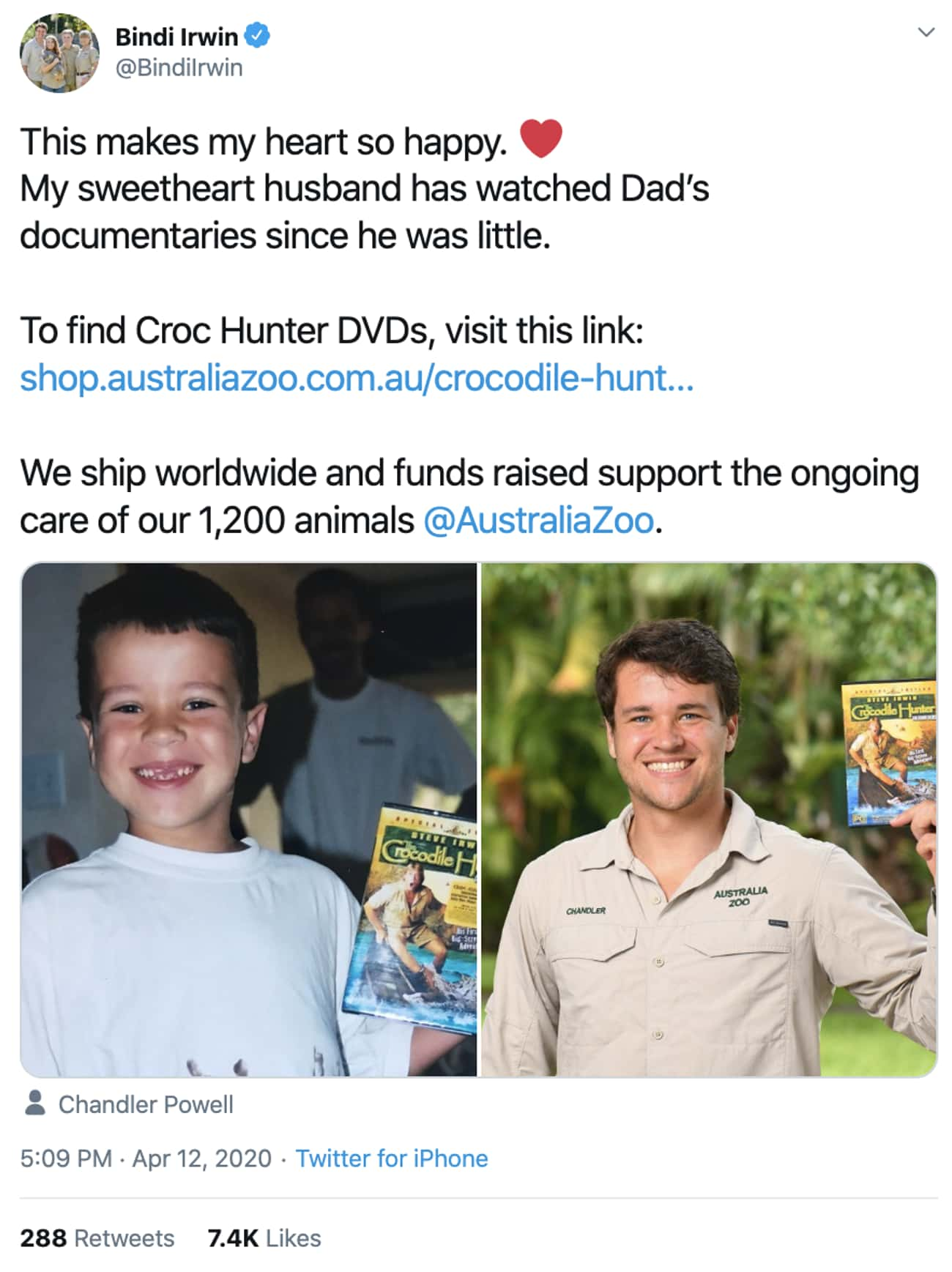 Her Hubby Is A Huge Steve Irwi is listed (or ranked) 4 on the list 18 Photos Of Bindi Irwin That Would Make Her Father, Steve Irwin Proud