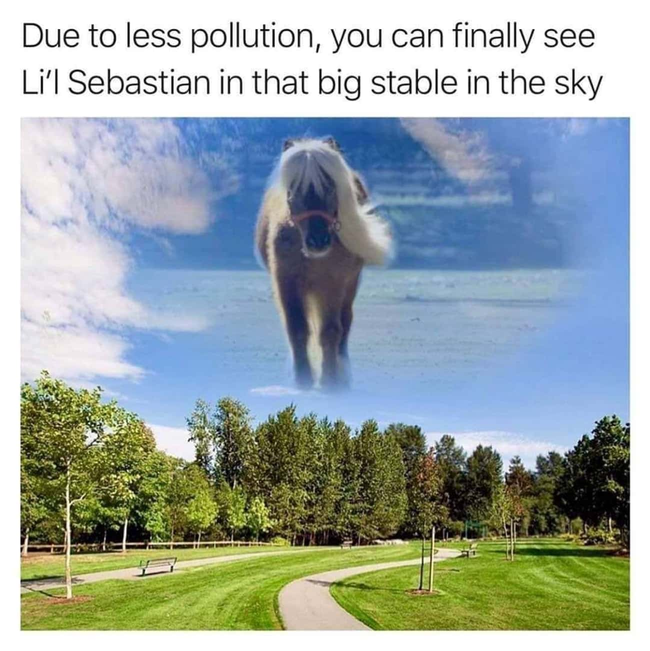 That Big Stable In The Sky is listed (or ranked) 4 on the list 33 'Parks and Recreation' Memes That Imagine Quarantine In Pawnee