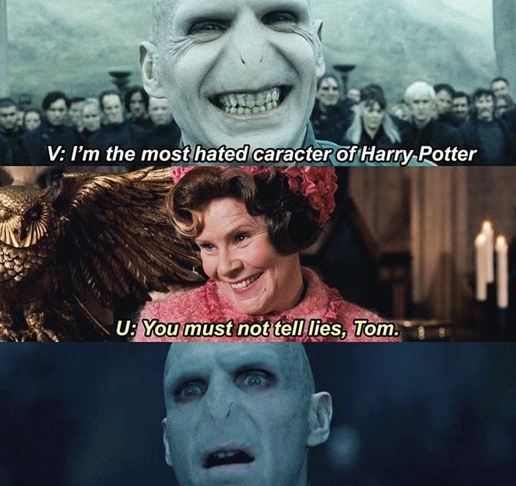 """Random Memes That Have Us Calling Voldemort """"He Who Should Not Be Respected"""""""