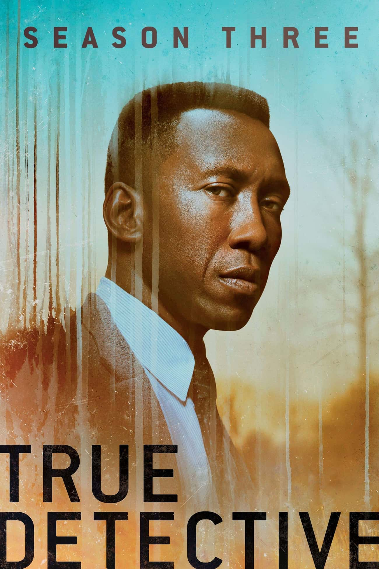 True Detective - Season 3 is listed (or ranked) 2 on the list The Best Seasons of True Detective