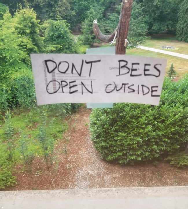 Don't Bees Open Outside is listed (or ranked) 20 on the list 32 Hilarious Sign Fails That Made Their Messages Meaningless