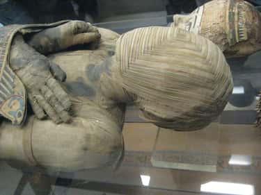 Elaborately Wrapped Egyptian Mummy