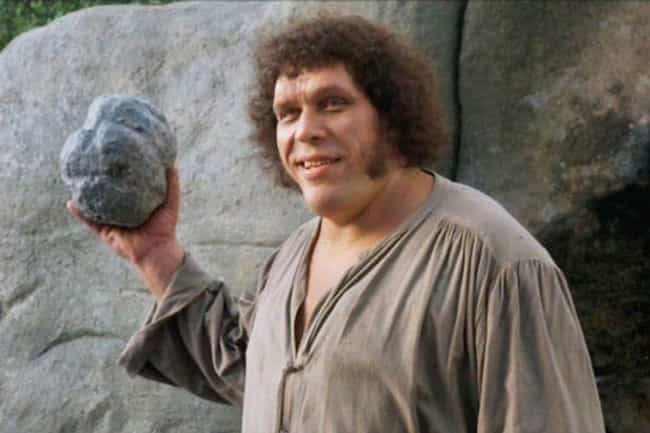 He Was Especially Gentle... is listed (or ranked) 3 on the list 14 Heartwarming Stories About Andre The Giant From The People Who Knew Him