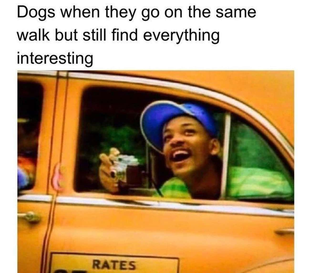 Still Exciting is listed (or ranked) 4 on the list 22 Fresh Prince Memes That Are West Philadelphia, Born And Raised