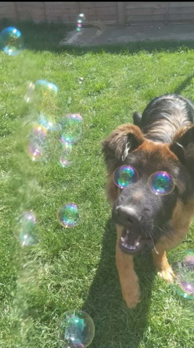Eye Bubbles is listed (or ranked) 10 on the list 23 Should-Have-Been-Impossible Moments That Actually Happened