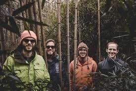 Image of Random Best Bands Named After Birds