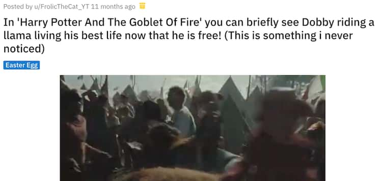 House Elves Ride Llamas In The Goblet Of Fire